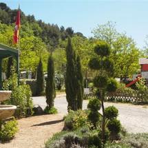 Entrée camping rose de Provence Riez