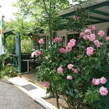 L'accueil en fleures